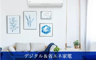デジタル&省エネ家電販売